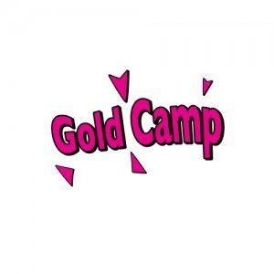 Intermediate Camp